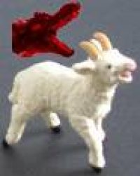 two-horned-lamb
