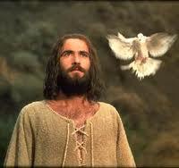 dove-on-jesus