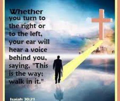walk-ye-in-it